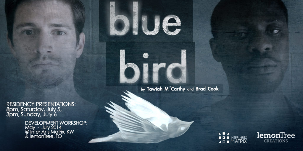 Blue Bird Development Workshop